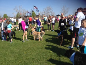 Runners gathering at the start line.